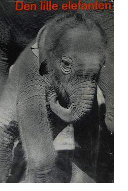 ylla-elefant